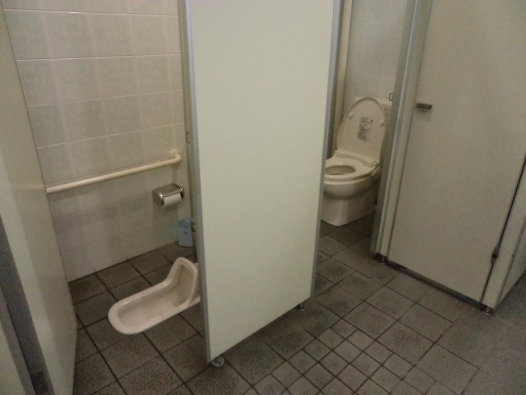 Curiosidades: O banheiro no Japão Intercâmbio & Viagem #423B2F 1024 768