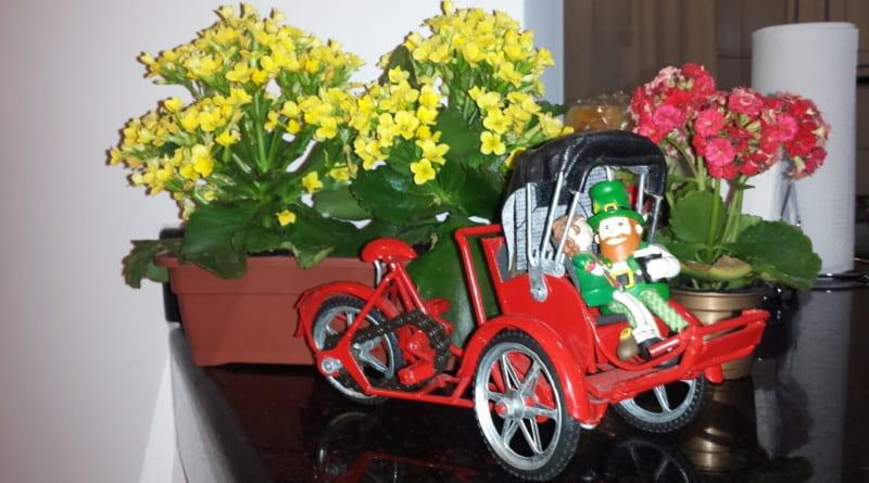 Miniatura de Rickshaw do Vietnã
