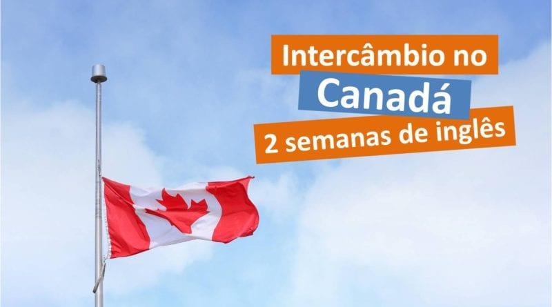 Quanto custa um intercâmbio no Canadá - 2 semana - Foto Pexels